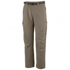 Брюки Silver Ridge Cargo Pant