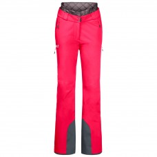 Горнолыжные штаны SNOW SUMMIT PANTS W