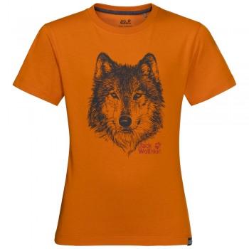Фото Футболка Brand T Boys (1607241-3062), Цвет - оранжевый, Футболки