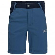 Шорты Dillon Flex Shorts