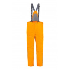 Горнолыжные штаны DARE GTX