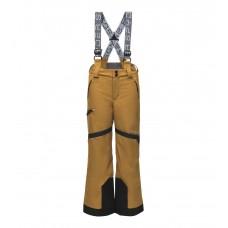 Горнолыжные штаны PROPULSION