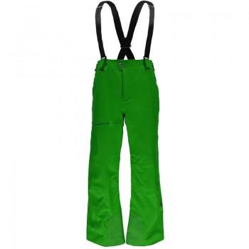 Фото Брюки горнолыжные PROPULSION (783020-313), Цвет - зеленый, Горнолыжные